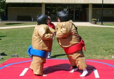 Sumo Suits Image